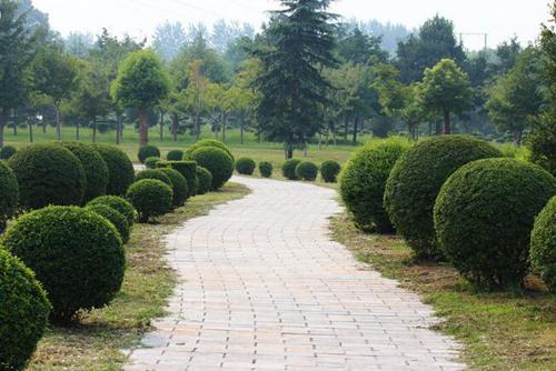 四川园林绿化