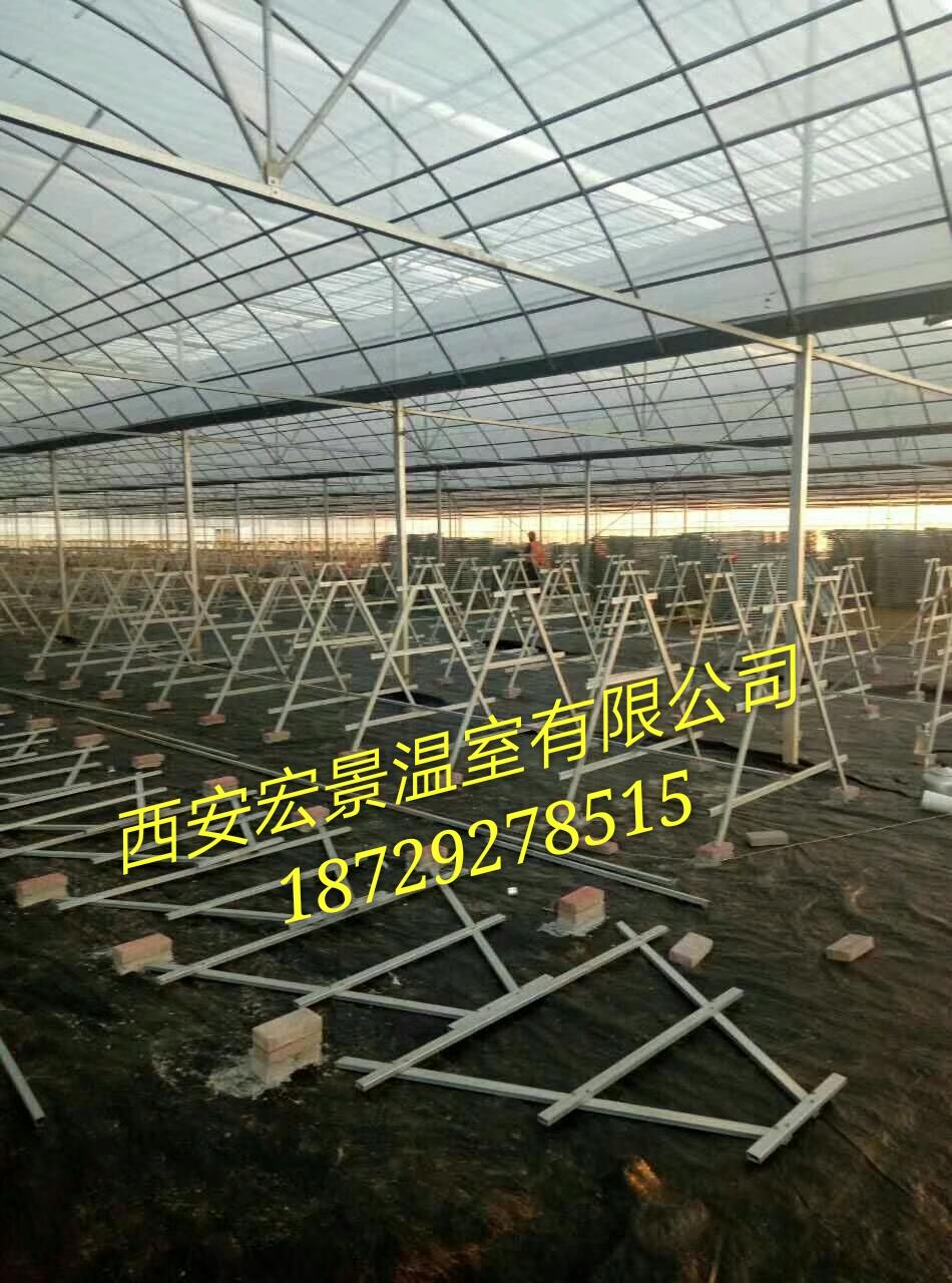 温室大棚施工场地