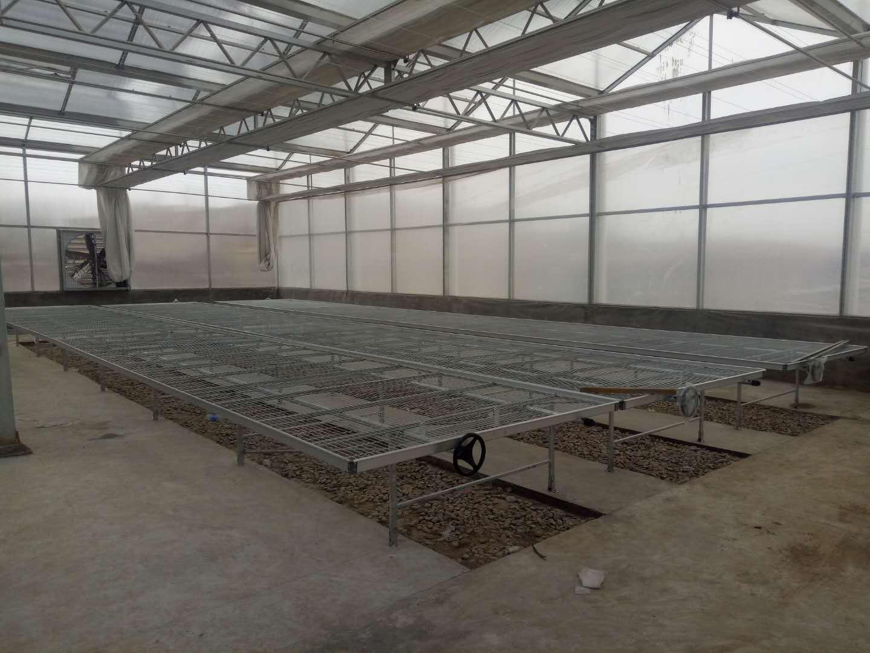 西安智能温室大棚制作