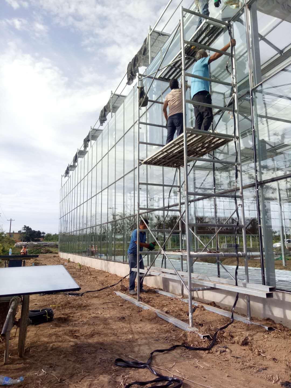 玻璃连栋拱棚制作