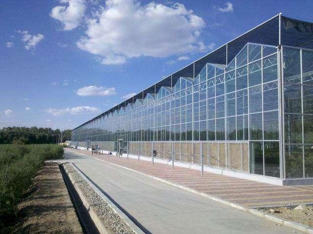 西安温室玻璃大棚