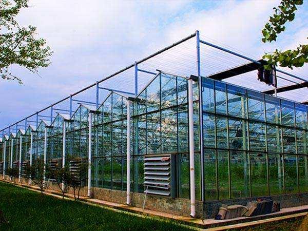 西安玻璃温室大棚