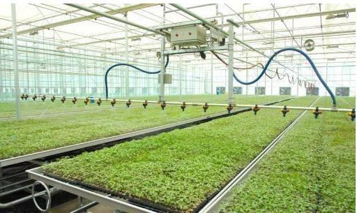 西安智能温室大棚