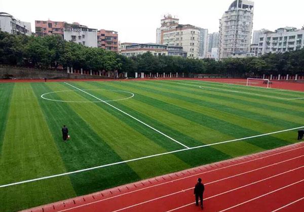 四川人造草坪施工案例
