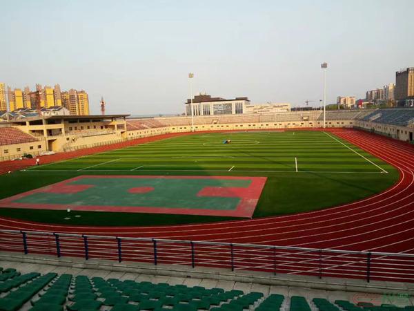 四川足球场人造草坪
