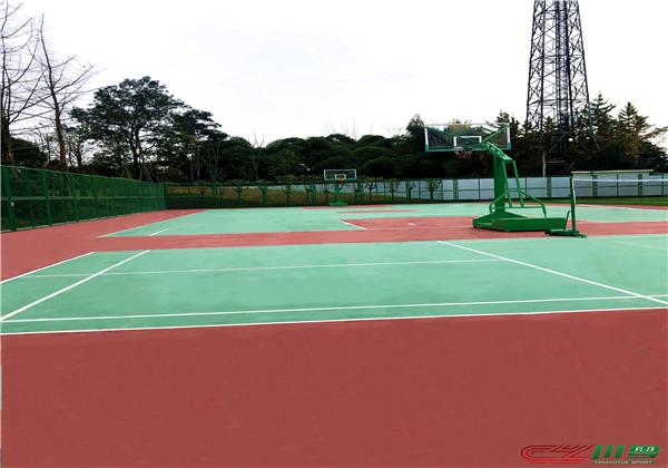 成都市郫都区花园镇公园运动场地改造项目