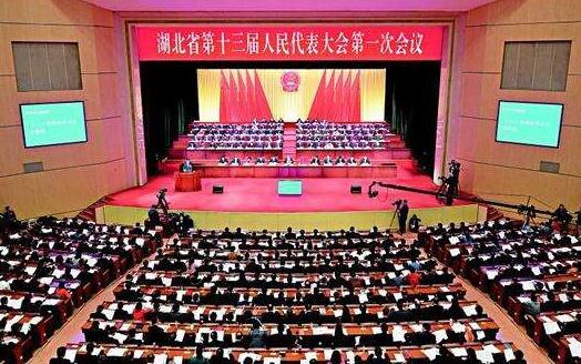 湖北省十三届人大三次会议收到代表议事原案29件