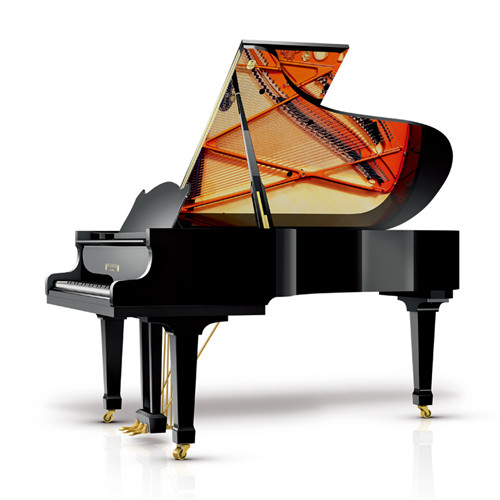 波兰原装W206T钢琴
