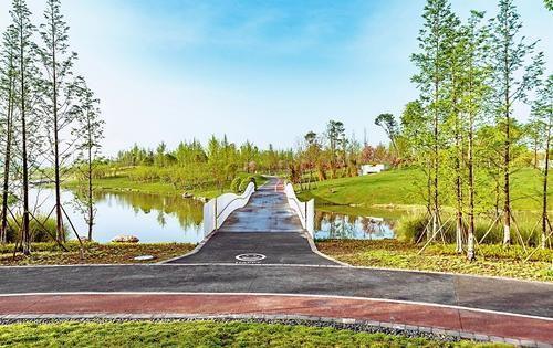 """公園城市已初具規模,成都修了條2600多公裏 的""""綠色絲路"""""""