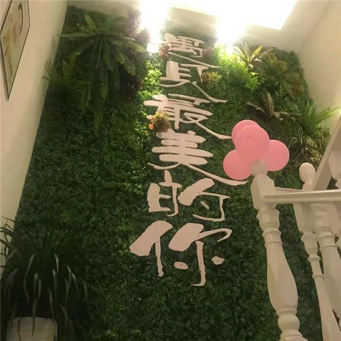悦目沁颜美容会所陕西植物墙项目