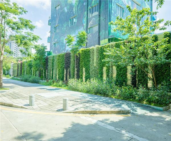 鼎时植物墙
