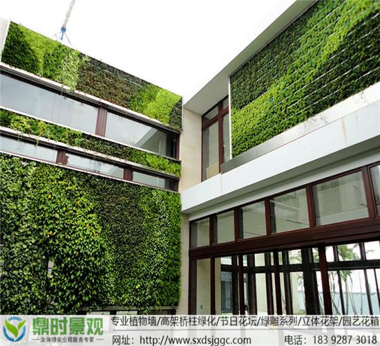陕西植物墙概念