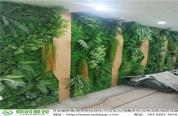 仿真陕西植物墙的设计原则