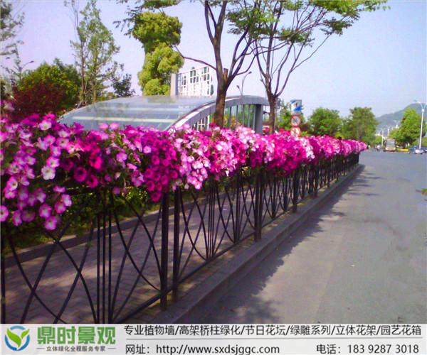 西安护栏绿化