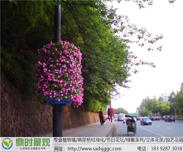 陕西立体路灯杆花柱绿化