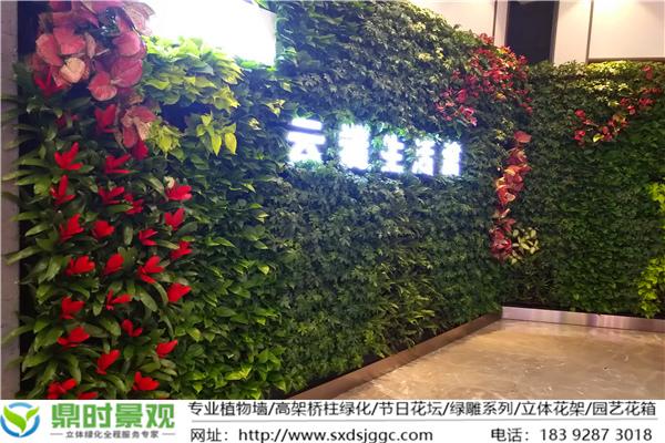 恒志·云都 生态植物墙