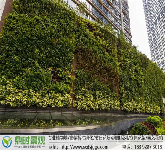 植物墙和垂直绿化是一个概念吗?西安植物墙公司
