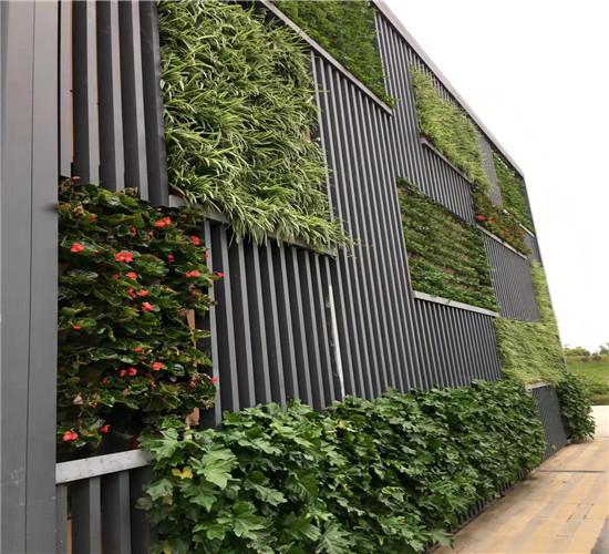 西安立体绿化
