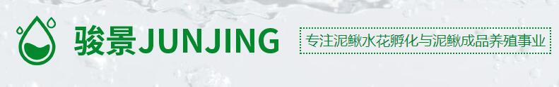 正规彩票刷流水兼职 泥鳅养殖技术
