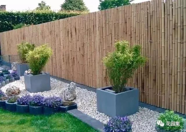 60款竹子在花园中的运用,清新脱俗