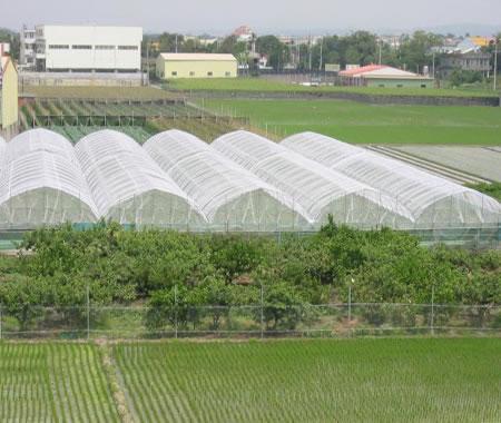 河北防虫网生产厂家