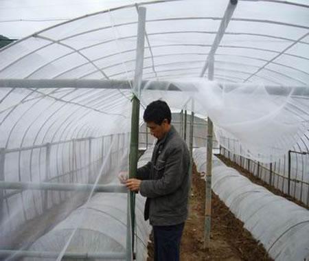 蔬菜大棚防虫网