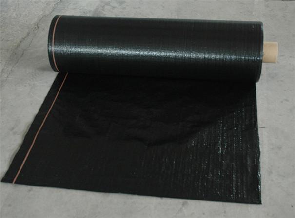 黑色果园防草布