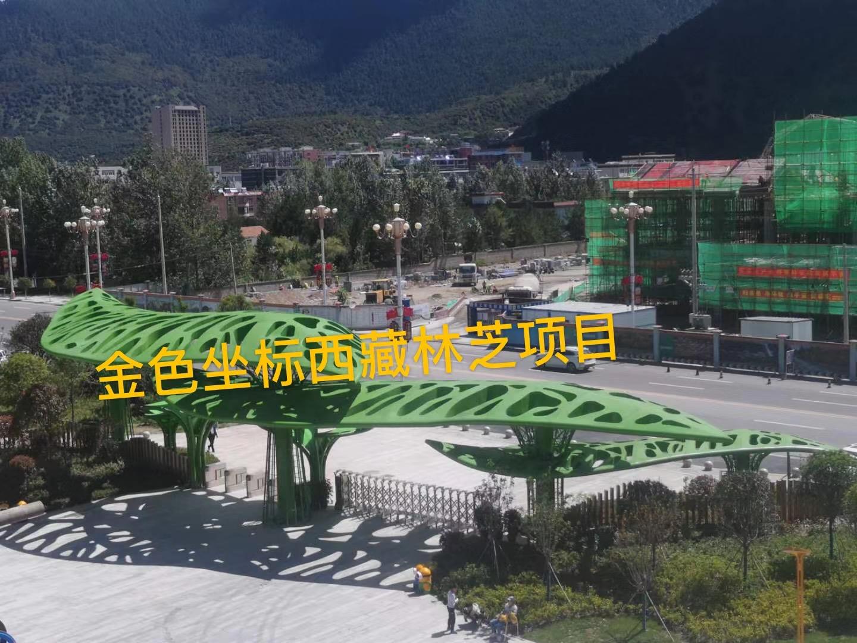 金色坐標西藏林芝項目案例