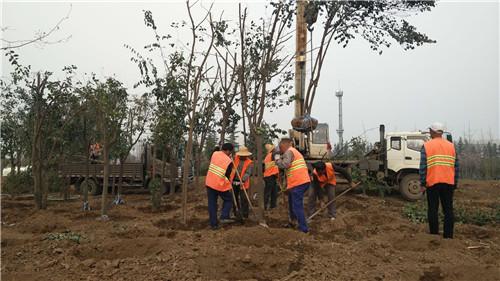 陝西園林綠化工程