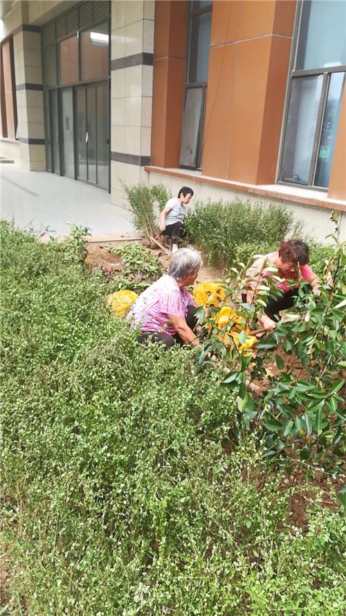 陕西园林绿化工程