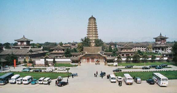 法门寺绿化项目-陕西园林绿化工程