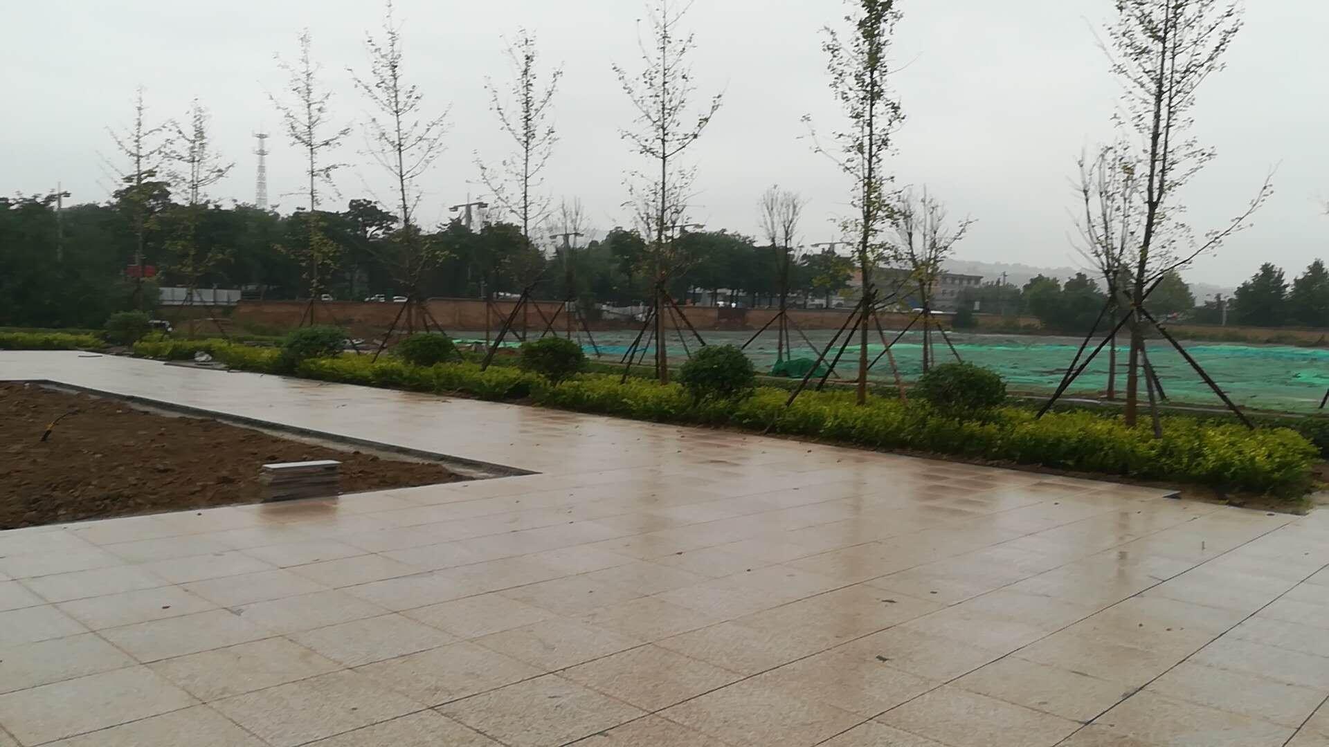 陕西园林景观设计厂家