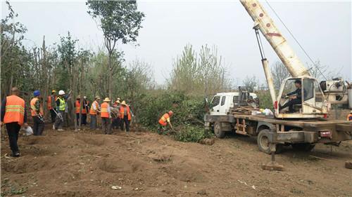 陝西園林綠化工程哪家好