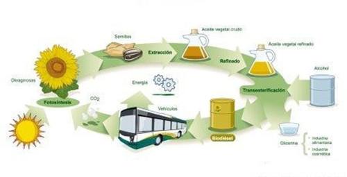 植物油制生物柴油工程哪家好