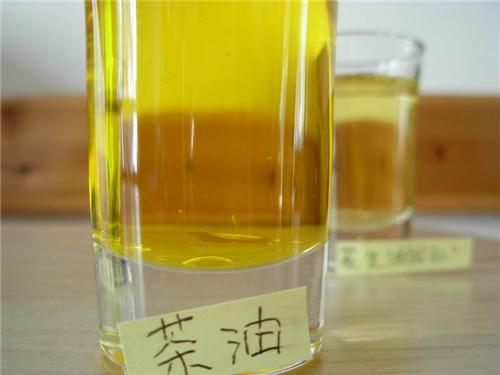 河南植物油脂工程