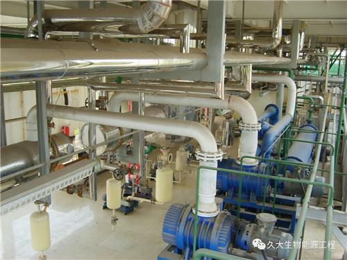 河南生物柴油工程厂家之地沟油的春天