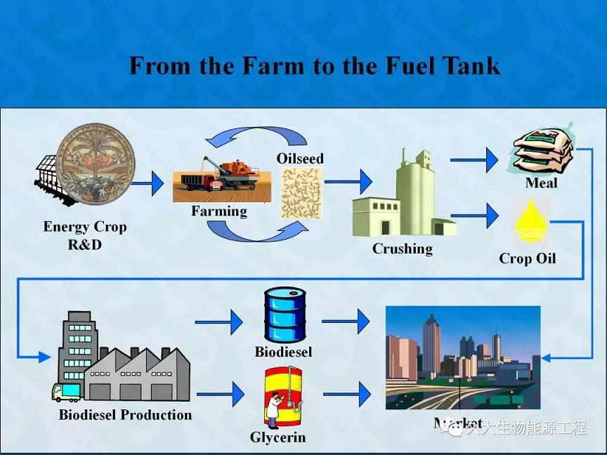 河南生物柴油工程-Biodiesel Plant 生物柴油厂3D动漫展示