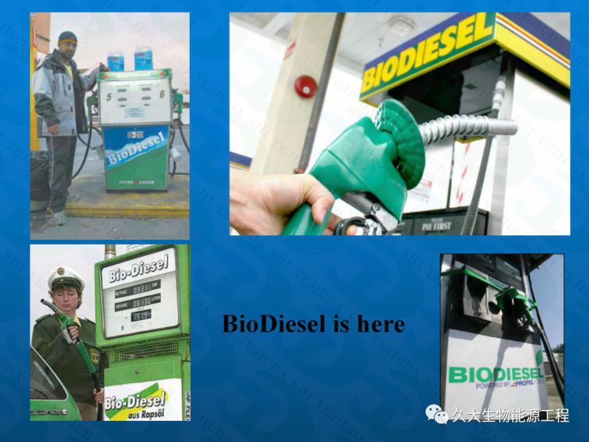 """河南生物柴油工程-""""地沟油""""变身生物柴油 你加吗?"""