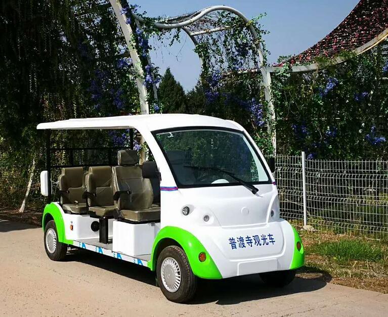成都电动观光车-普光寺合作案例