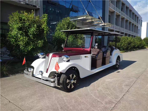 金尼特新能源汽車為您提供鋰電池貴賓老爺車