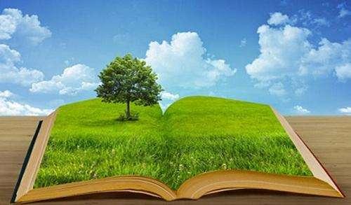 广元环境影响评估企业