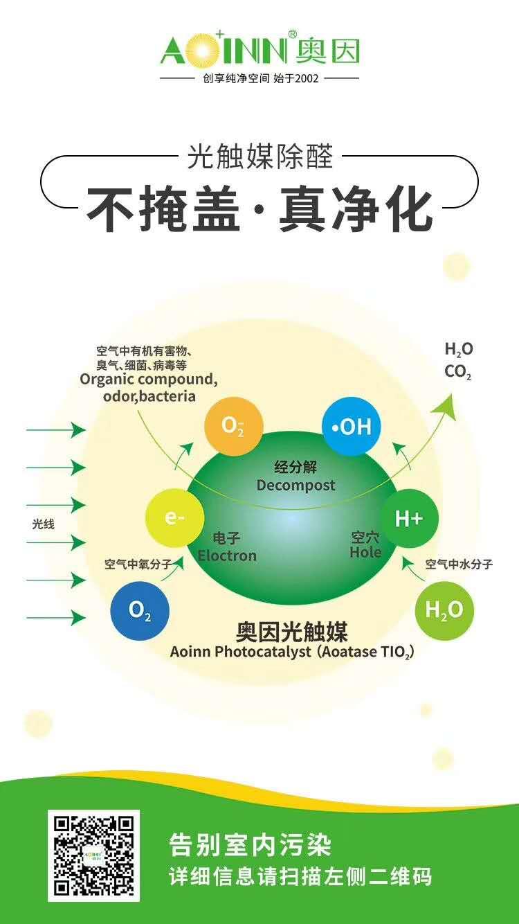 钟情于室内污染治理健康事业
