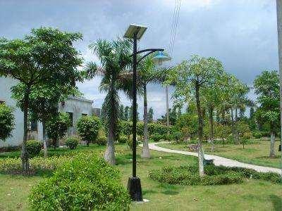 四川太阳能庭院灯,点亮乡村,幸福每一个小院