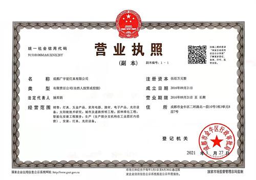 成都广宇星灯具有限公司营业执照