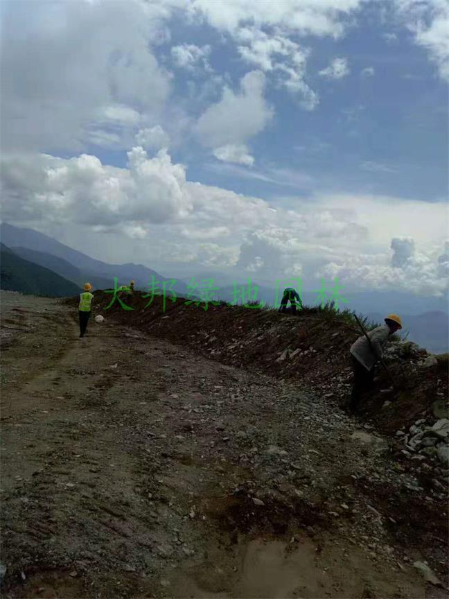 四川锦屏特种水泥股份有限公司矿山生态恢复工程