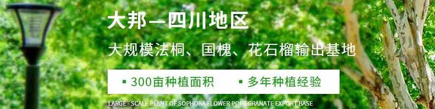 四川大邦园林绿地工程有限公司