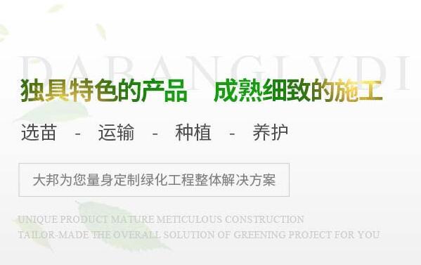 四川大邦绿地园林工程有限公司