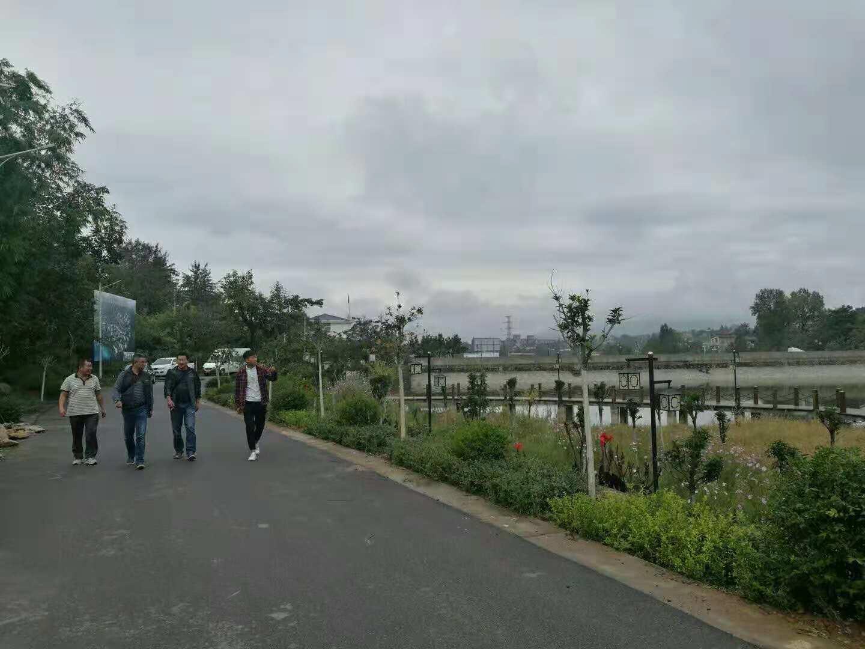 冕寧縣紅櫻湖綠化工程案例