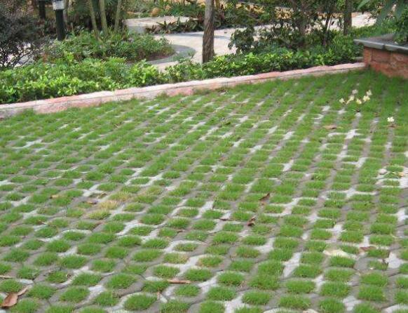 襄阳植草砖展示