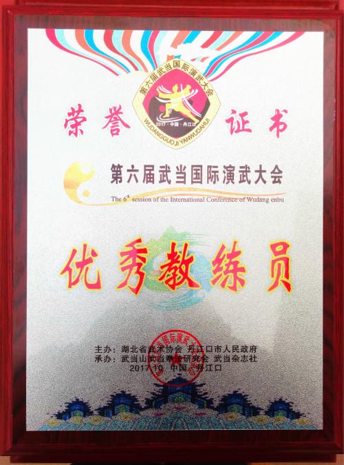 金刚武校参加武当国际演武大会
